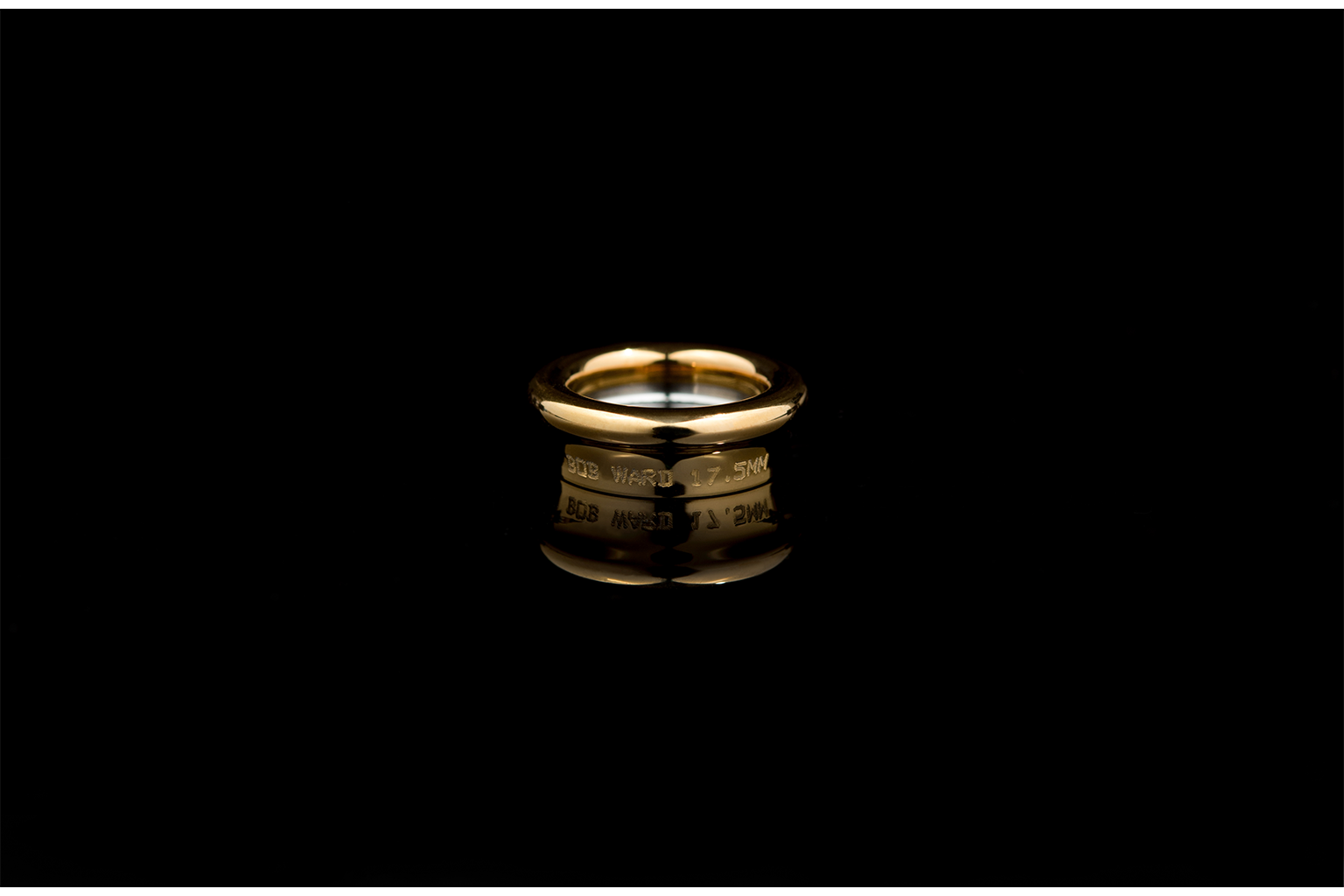 Horn Rim Stainless Gold H-Kote - Bob Ward